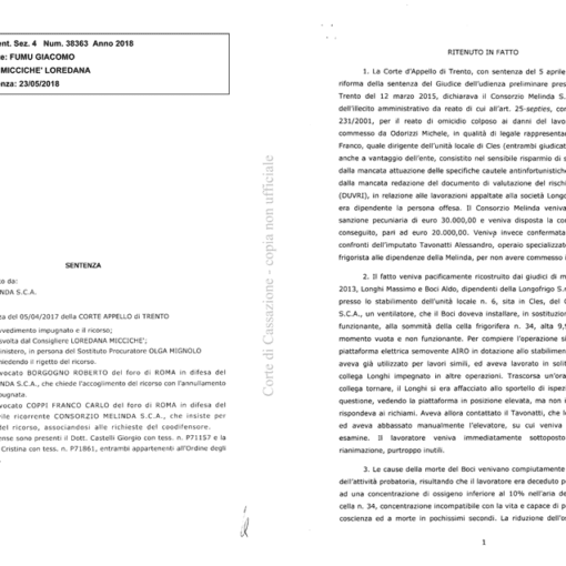 Decreto legislativo 231 del 2001 principi di diritto