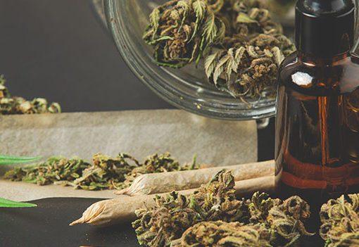 la coltivazione domestica degli stupefacenti , cannabis hashish